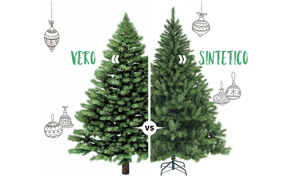 Albero Di Natale Vero.L Albero Di Natale Deve Essere Finto Altamente Inquinante O Vero Che Favorisce La Deforestazione Power Blog